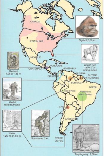 Guide des animaux cachés 1
