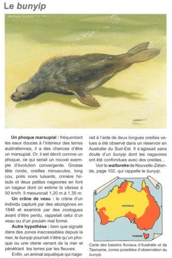 Guide des animaux cachés 2
